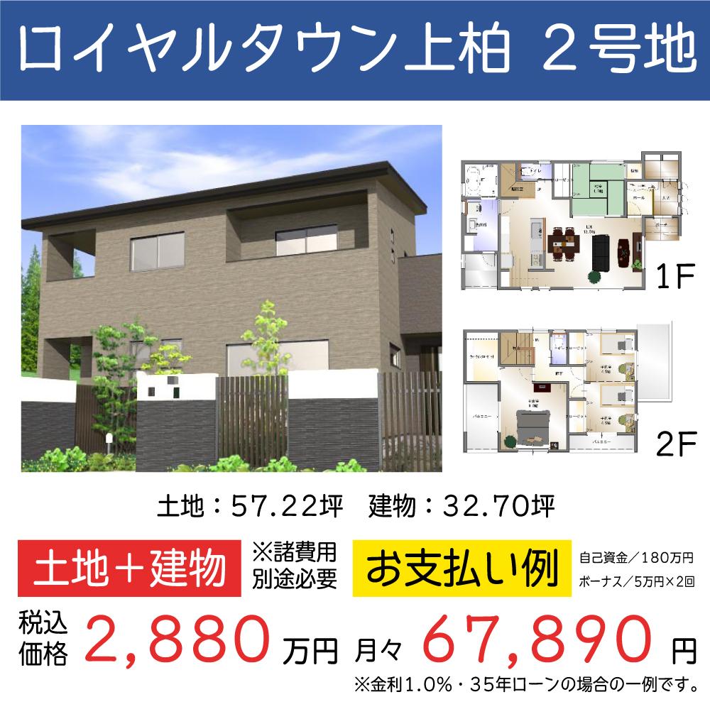ギャラリー:四国中央店 WEBチラシ 12月vol.1